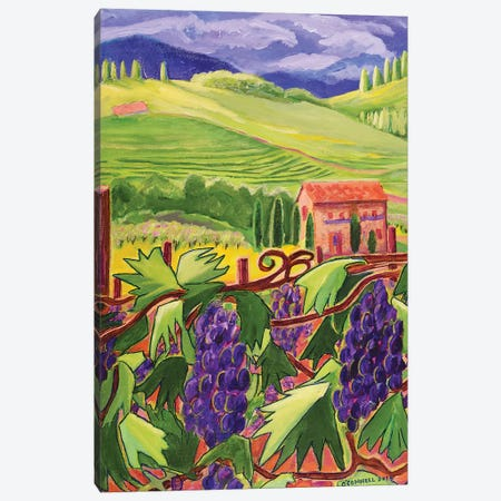Temecula Vineyards II Canvas Print #OCN90} by James O'Connell Canvas Art Print