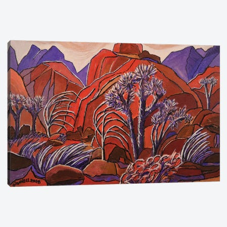 Winds Of Anzo Barrezo Canvas Print #OCN92} by James O'Connell Art Print