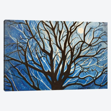 Winter Night Canvas Print #OCN95} by James O'Connell Canvas Art