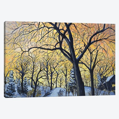 Winter Walk At Dawn Canvas Print #OCN96} by James O'Connell Canvas Artwork
