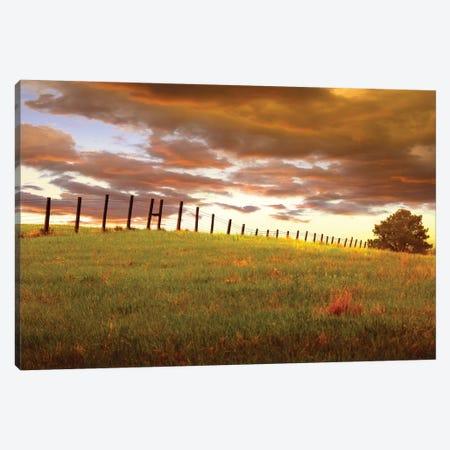 Fenceline, South Dakota Canvas Print #ODL1} by Dale O'Dell Canvas Art Print
