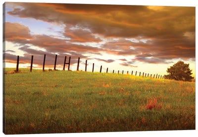 Fenceline, South Dakota Canvas Art Print