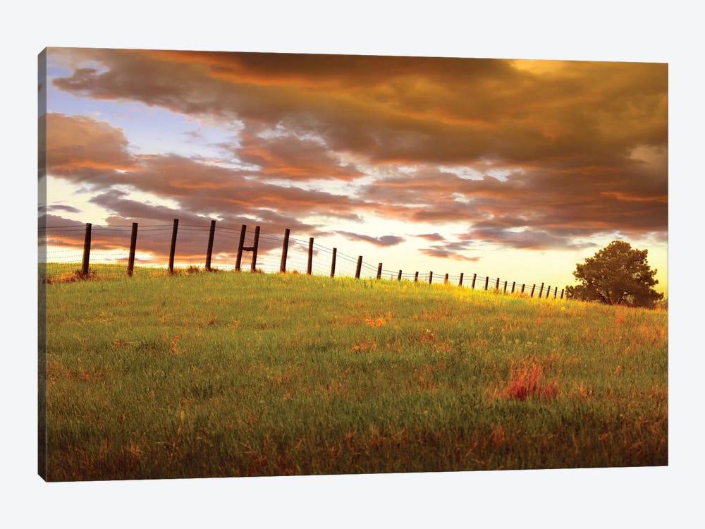 Fenceline, South Dakota by Dale O'Dell 1-piece Canvas Wall Art