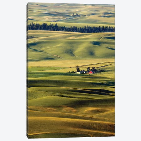 Palouse XXVII Canvas Print #ODL3} by Dale O'Dell Canvas Print