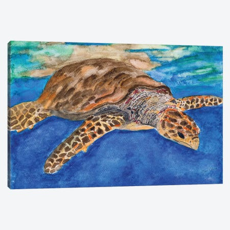 Turtle at Sea Canvas Print #ODM2} by Jan Odum Canvas Art