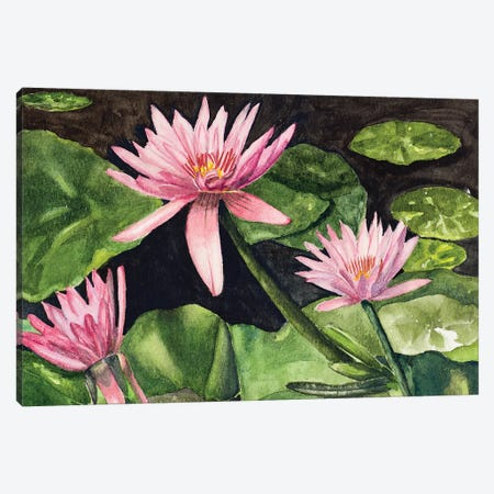 Water Lillie's Canvas Print #ODM3} by Jan Odum Canvas Art