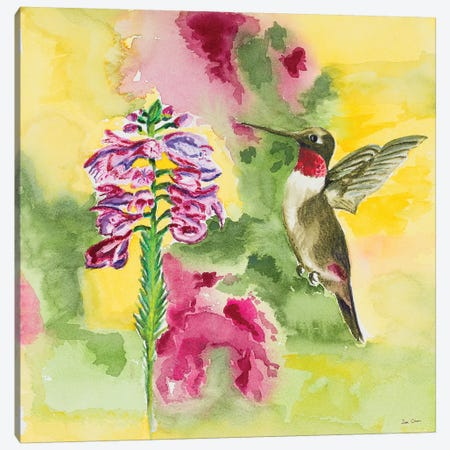 Watercolor Hummingbird Canvas Print #ODM4} by Jan Odum Canvas Print