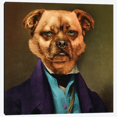 Sir Crawford Canvas Print #ODT11} by Oddball Tails Canvas Art