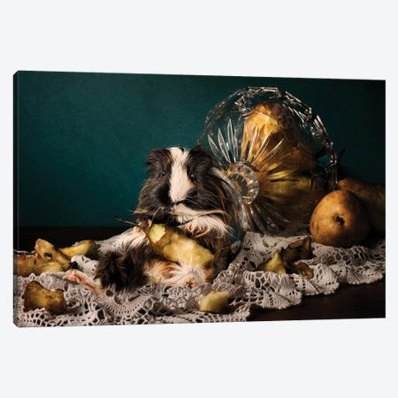 Still Life Gone Wrong - The Guinea Pig Canvas Print #ODT12} by Oddball Tails Canvas Wall Art