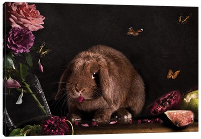Still Life Gone Wrong - The Rabbit Canvas Art Print