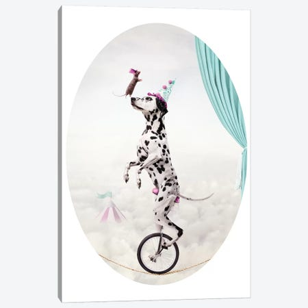 The Balancing Act Canvas Print #ODT14} by Oddball Tails Art Print