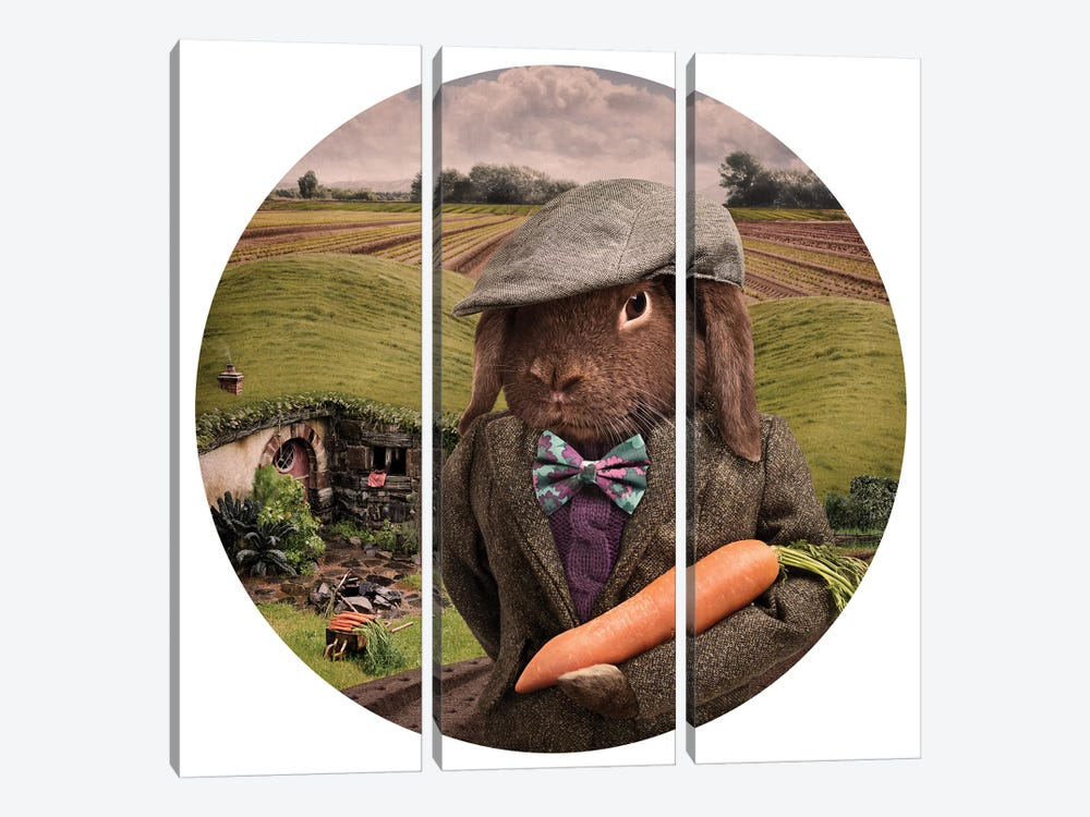 The Carrot Farmer by Oddball Tails 3-piece Canvas Artwork