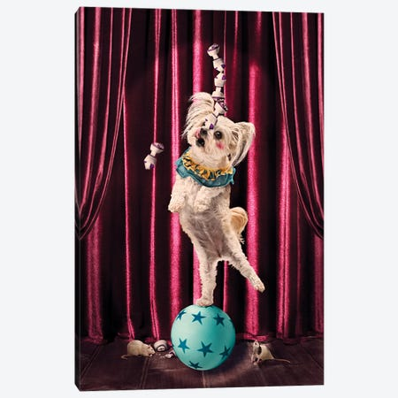 The Clown Canvas Print #ODT16} by Oddball Tails Canvas Print