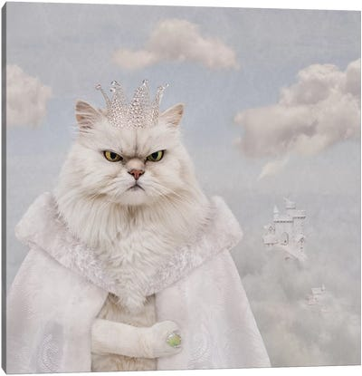 The Feline Cloud Conquer Canvas Art Print