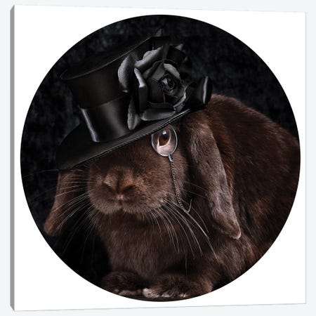 The Rabbit Ring Master 3-Piece Canvas #ODT25} by Oddball Tails Canvas Art