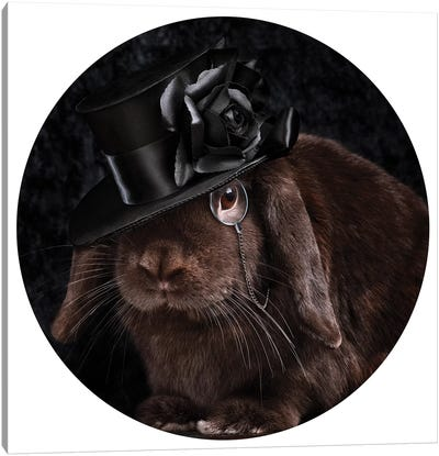 The Rabbit Ring Master Canvas Art Print