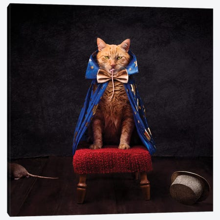 The Wicked Magician Canvas Print #ODT31} by Oddball Tails Canvas Art