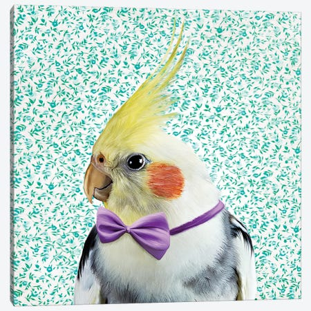Dapper Cockatiel Canvas Print #ODT3} by Oddball Tails Canvas Wall Art