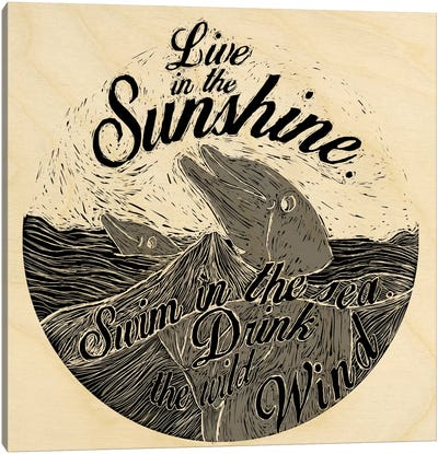 Live In The Sunshine Canvas Art Print
