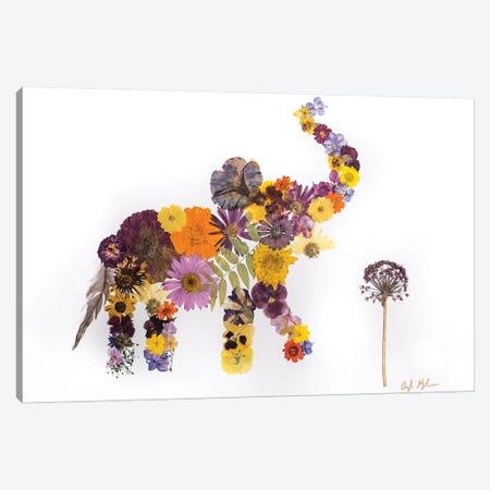 Elephant - Eli Canvas Print #OFC10} by Oxeye Floral Co Canvas Art