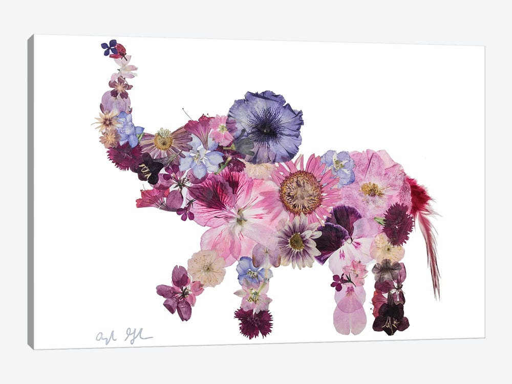 Elephant-Evelyn by Oxeye Floral Co 1-piece Canvas Artwork