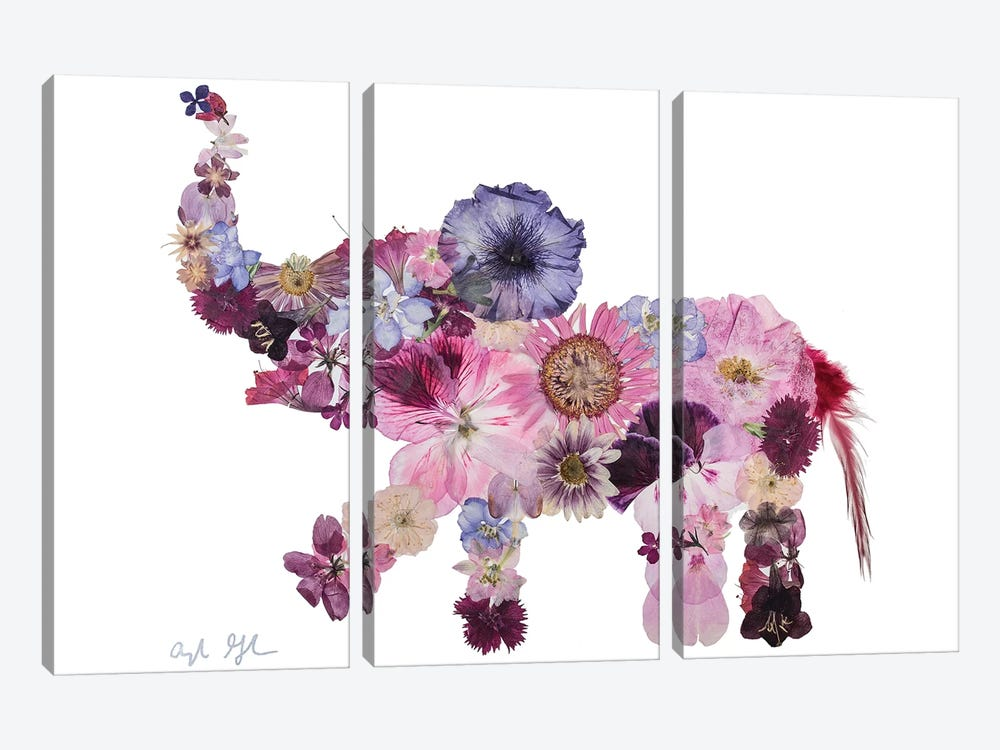 Elephant-Evelyn by Oxeye Floral Co 3-piece Canvas Artwork