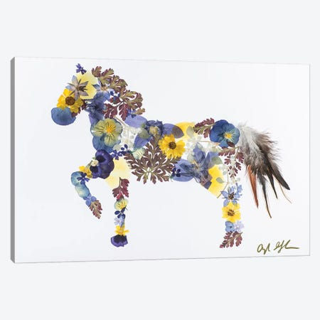 Horse - Blue And Yellow Canvas Print #OFC14} by Oxeye Floral Co Art Print