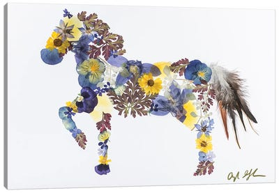 Horse - Blue And Yellow Canvas Art Print