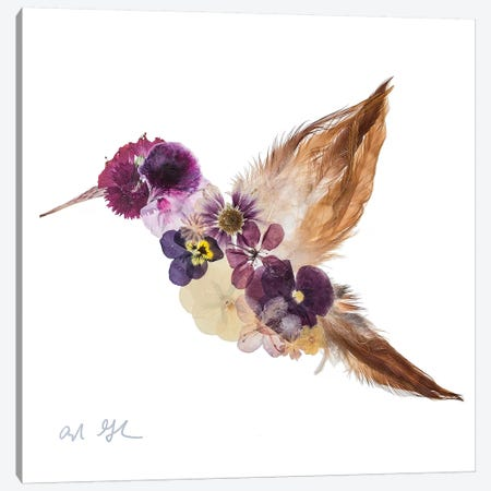 Hummingbird Canvas Print #OFC15} by Oxeye Floral Co Art Print