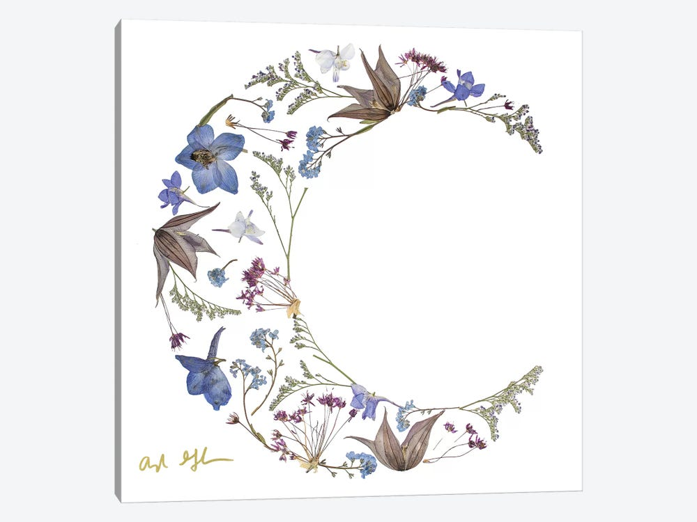 Moon by Oxeye Floral Co 1-piece Canvas Art