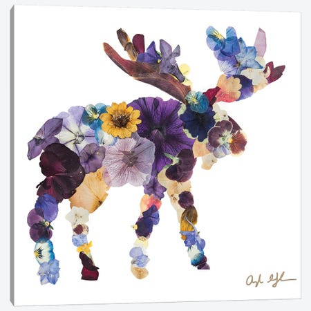 Moose Canvas Print #OFC20} by Oxeye Floral Co Canvas Art Print