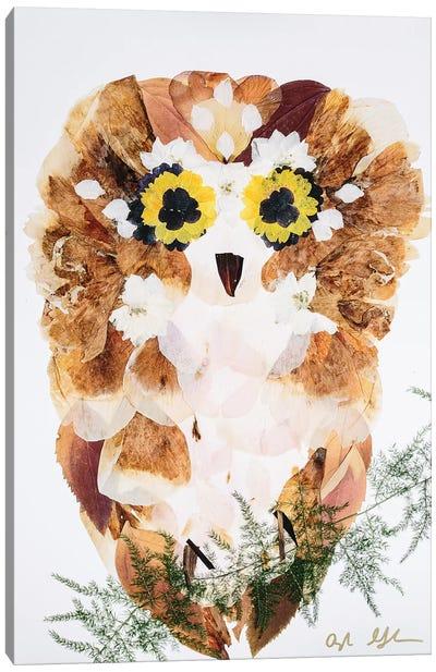 Owl - Fluff Canvas Art Print