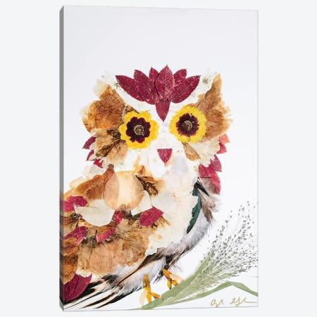 Owl - Reds 3-Piece Canvas #OFC22} by Oxeye Floral Co Canvas Print