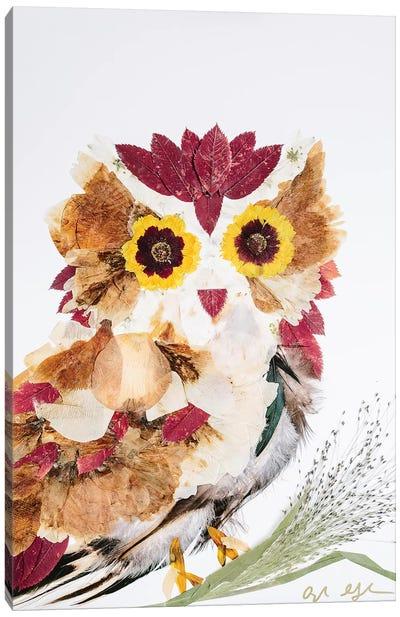 Owl - Reds Canvas Art Print