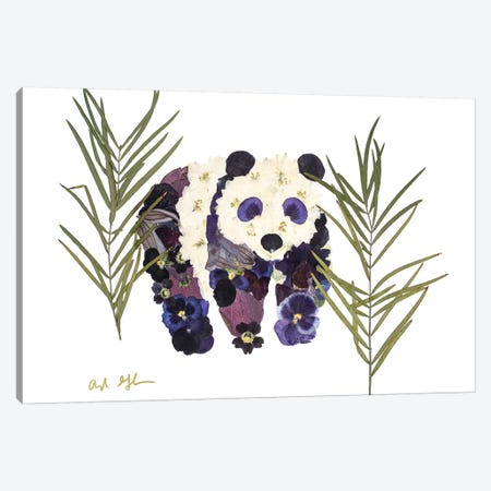Panda Canvas Print #OFC23} by Oxeye Floral Co Canvas Print