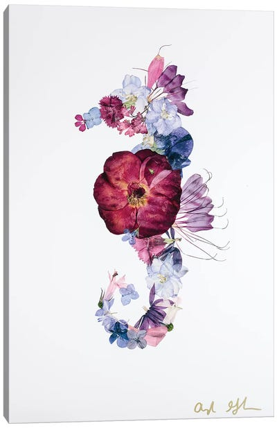 Seahorse - Bright Canvas Art Print