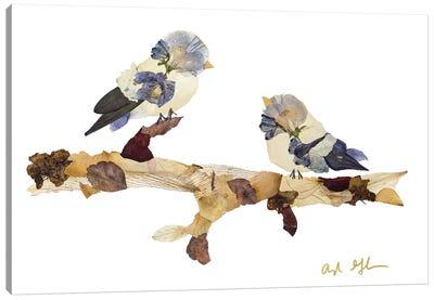 Songbirds Canvas Art Print