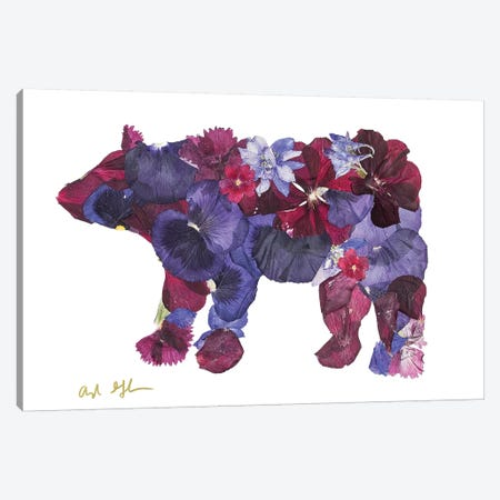 Bear II Canvas Print #OFC2} by Oxeye Floral Co Canvas Art