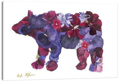 Bear II Canvas Art Print