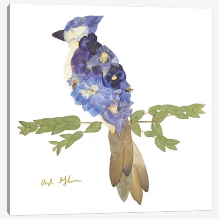 Blue Jay Canvas Print #OFC3} by Oxeye Floral Co Canvas Wall Art