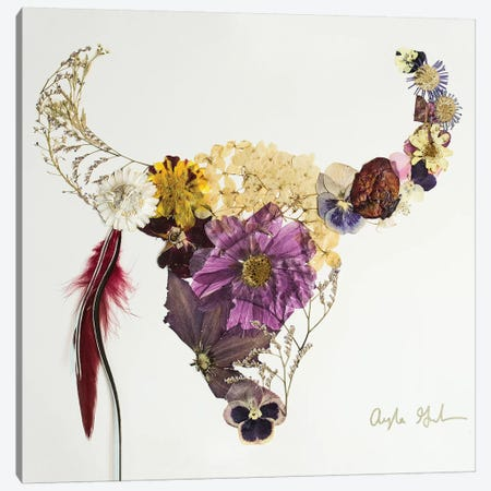 Buffalo Beau Canvas Print #OFC4} by Oxeye Floral Co Canvas Print