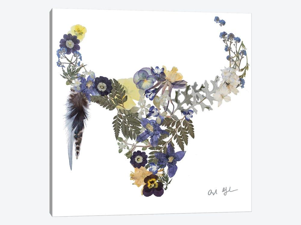 Buffalo Bria by Oxeye Floral Co 1-piece Canvas Print