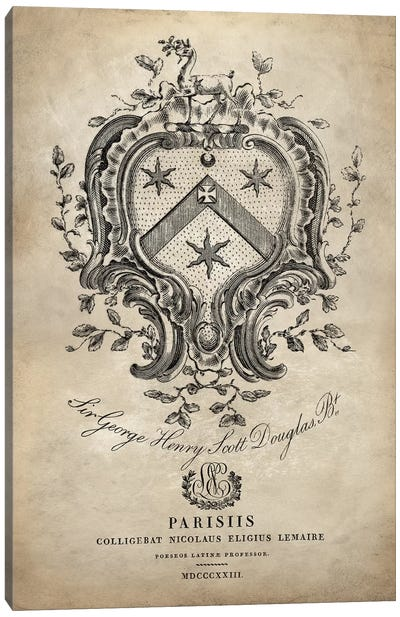 Heraldry IV Canvas Art Print