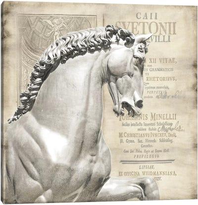 Renaissance IV Canvas Art Print