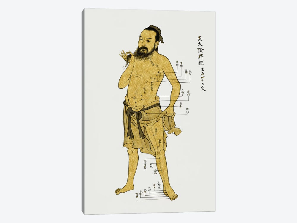 Vintage Acupuncture by Oliver Jeffries 1-piece Canvas Print