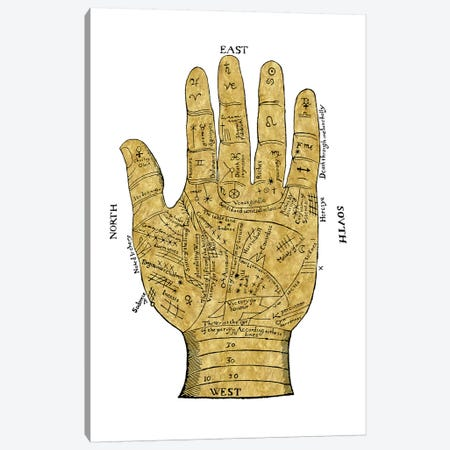 Vintage Palmistry Canvas Print #OJE40} by Oliver Jeffries Art Print