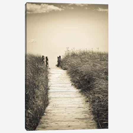 Beach Boardwalk Canvas Print #OJS100} by Olivia Joy StClaire Art Print