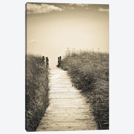 Beach Boardwalk Canvas Print #OJS100} by Olivia Joy StClaire Art Print