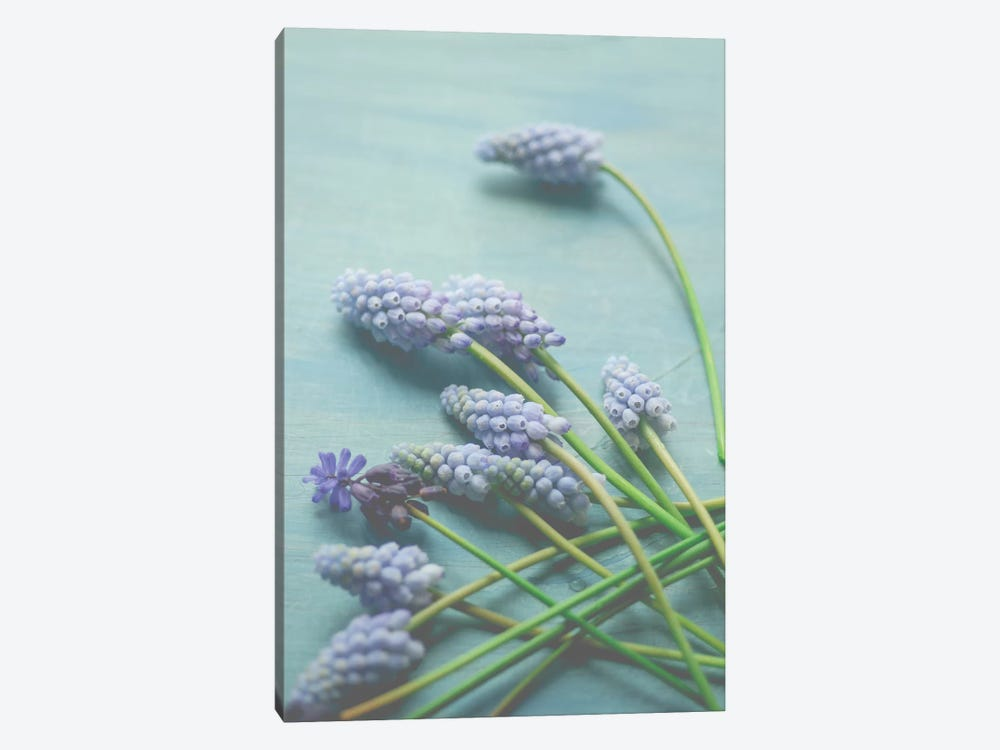Blue Floral Still Life by Olivia Joy StClaire 1-piece Canvas Wall Art