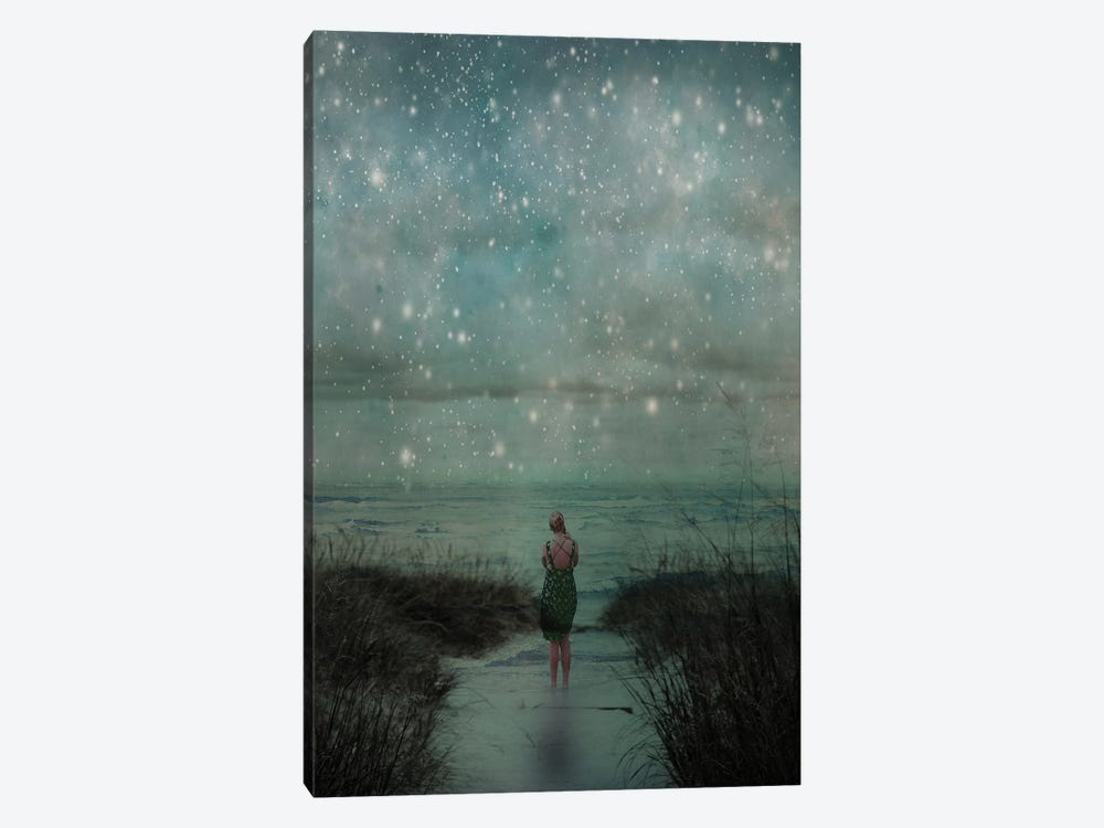 Celestial by Olivia Joy StClaire 1-piece Canvas Print